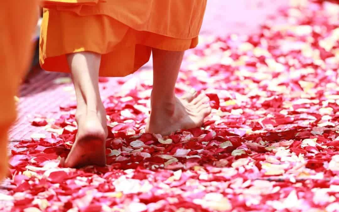 Mut zum Gefühl: Wie Wut unsere Traurigkeit über Verletzungen schützt