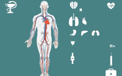 Hypochondrie: Ein Erfahrungsbericht über Symptome und Auswege