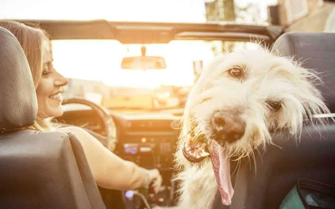 Angst vor dem Autofahren: Autofahrangst & wie man sie überwindet