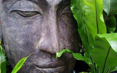 Meditation und Wirklichkeit: Macht – Zweck – Sinn hinter Meditation