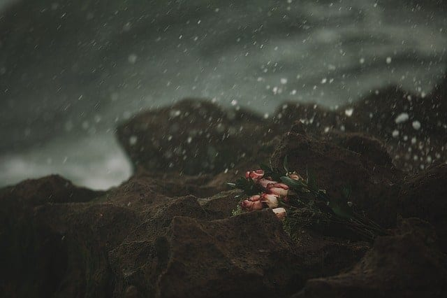 einsamkeit empathen spüren leid anderer