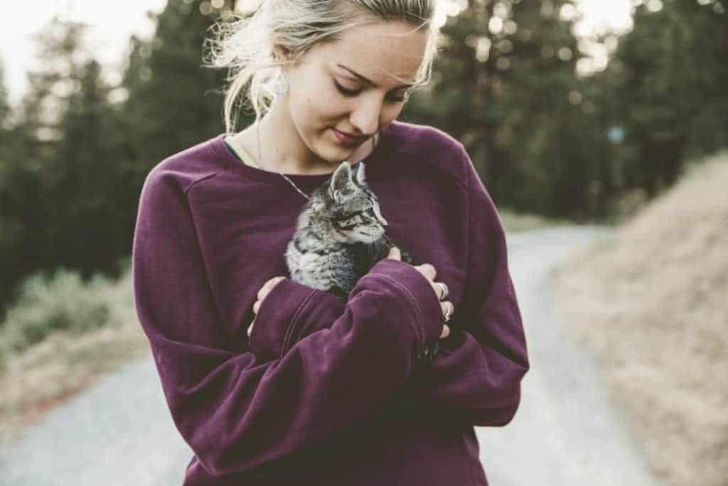wie uns Tiere bei Angst und Depressionen helfen zu heilen
