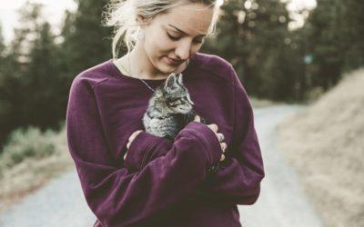Der Haustier-Effekt: Durch Tiere heilen