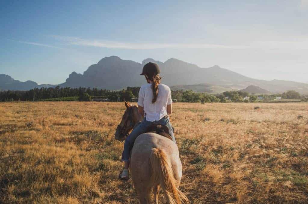 tiergestützte therapie gegen angst, panikattacken und depressionen?