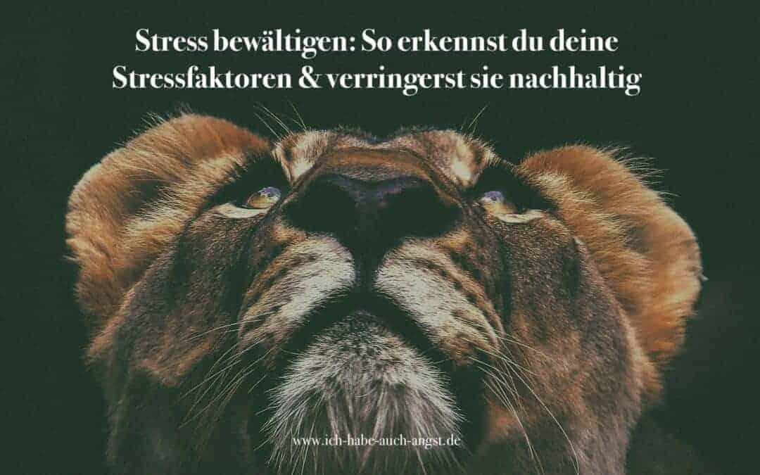Stressbewältigung: Stressfaktoren und wie wir sie erkennen und verringern